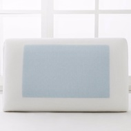 Gel Pad Memory Foam Pillow