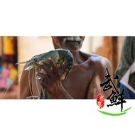 武鮮市集 斯里蘭卡 活凍 野生泰國蝦 手臂蝦 大蝦 長臂蝦 爆漿蝦公 草蝦 虎蝦 300~400g±10%/尾