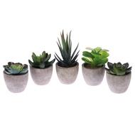 5Pcs Retroไม้อวบน้ำประดิษฐ์จำลองพืชสีเขียวสร้างสรรค์ปลอมบอนไซกระถางตกแต่งบ้าน