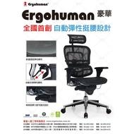 Ergohuman 111 豪華版 人體工學椅 贈 補強腰靠  萬元以下銷售冠軍