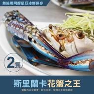 【優鮮配】巨無霸斯里蘭卡公花蟹2隻(400g/隻)