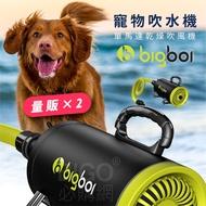 人氣熱賣NO.1【bigboi】(量販2台) MINI 寵物單馬達吹風機 吹水機 乾燥 烘乾 洗澡 清潔 美容 貓狗必備
