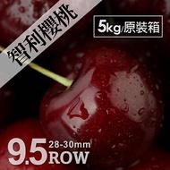 【築地一番鮮】空運智利櫻桃5kg原裝箱(28-30mm)