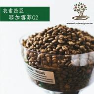 [微美咖啡]-1磅400元,耶加雪菲G2 水洗(衣索匹亞) 淺焙咖啡豆,500免運,新鮮烘培