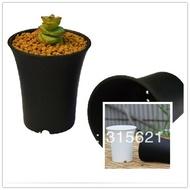 กระถางปลูกพืชอวบน้ำในเวียงจันทน์,กระถางปลูกไม้อวบน้ำสไตล์กะทัดรัด4ชิ้นขนาด7.8ซม. * 9ซม.