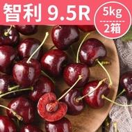 [甜露露]智利櫻桃9.5R 5kg 2箱(28mm)