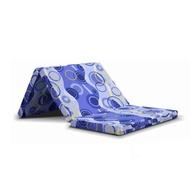 Viro Lion Foam Foldable Mattress
