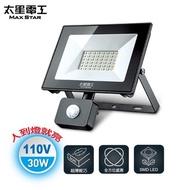 太星電工 30W LED感應投射燈/白光(110V)