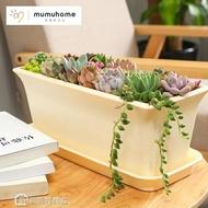 花盆 MMH多肉植物花盆創意肉肉簡約長方形多肉花盆塑料多肉組合大花盆
