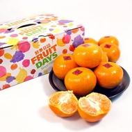 【鮮果日誌】大桔大利茂谷柑禮盒(精美禮盒4台斤裝)