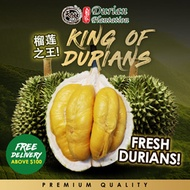 SALE 🔥榴莲之王 Fresh Durian / MSW / TSW / Black Gold / Red Prawn / More than 8 Types