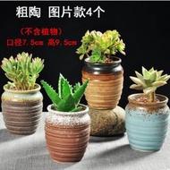 【多肉植物花盆-21號-兩款可選-1款/組】多肉花盆粗陶綠植物陶瓷簡約小花盆-5170851