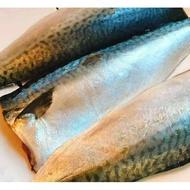 超便宜的店~特選挪威薄鹽鯖魚片(中/大)   832-0200