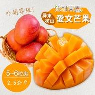 沁甜果園SSN‧外銷等級-屏東枋山愛文芒果(5-6粒裝/2.5公斤)