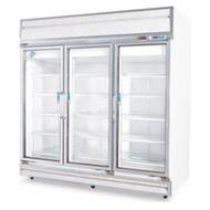 1595公升直立式冷凍櫃(冰櫃、冷藏櫃、冰箱)型號TC-600