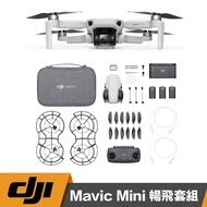 【eYe攝影】現貨 台灣公司貨 DJI MAVIC MINI 空拍機 全能版 249g 輕量化 續行30分鐘 4KM圖傳