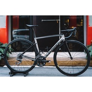 【現貨】Specialized S-Works Tarmac SL6 Sagan Superstar 車架