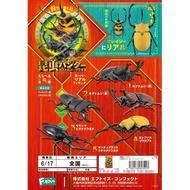 【現貨整套組或單款銷售日本空運版】F-toys昆蟲獵人甲蟲3(可選單款訂購或整套組優惠.一套5款)