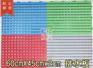 【尋寶趣】排水板 60*45*2cm 超耐用 排水板 棧板 塑膠地墊 止滑板 防滑板 乾溼分離 DBP-604502