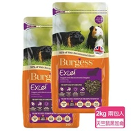 【Burgess英國伯爵】天竺鼠飼料-黑加侖&奧勒岡葉  2KG-兩包入