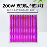 高效200W方型貼片植物生長燈LED大棚植物生長燈植物補光燈2009顆紅藍高亮晶片園藝育苗大棚蔬菜室內植物補光