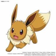 ~妖仔玩具~全新現貨 BANDAI 組裝模型 神奇寶貝 精靈寶可夢 Pokemon系列42 伊布 Eeve
