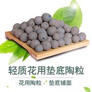 1L LECA balls Clay pebbles: gardening, terrarium, hydroponics | 陶粒