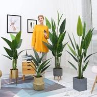 【快速出貨】北歐仿真植物假美人蕉ins風裝飾落地創意擺件大型綠植客廳盆栽 交換禮物