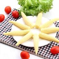冷凍玉米筍(1kg/包)++滿999元免運費++