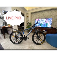 (po)Raleigh mountain bike