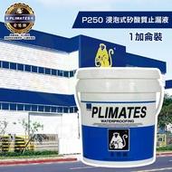 【金絲猴】《堵漏材》浸泡式矽酸質止漏液P-250(1加侖裝)