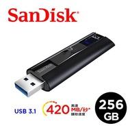 [富廉網]【SanDisk】ExtremePRO CZ880 USB3.1 隨身碟 256G