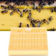 [Young Time]Plastic Bee King Breeding Tool กล่องเพาะพันธุ์ Bee King Bee King ขนาดเล็กเคลื่อนย้ายสัตว์เลี้ยงสำหรับผึ้งนก