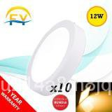 (10pcs) FY Surface Downlight LED Panel Light Ceiling Light 6 inch 12W - Round - Warm White w7q6