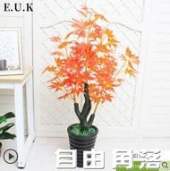 仿真植物盆栽鴻運當頭室內裝飾塑料假花防真花客廳擺件楓樹假盆景