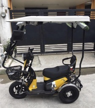 Brand New RFM Electric 3wheels Ebike with cover