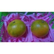 佛利蒙(柑)30斤