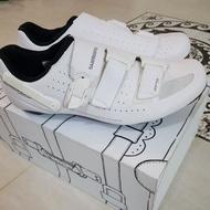 特價腳踏車鞋/SHIMANO /飛輪鞋 /27.8cm  /二手特價