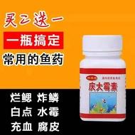 慶大霉素魚用黃粉殺菌土黴素魚水族金魚白點淨爛肉爛尾魚藥黃粉