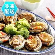 九孔鮑魚1Kg 燒烤必備 冷凍配送[CO51333]健康本味