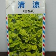 #興農牌 #種子 #『白杏菜』