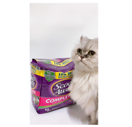 預購中-紫貓砂 Costco 好市多 Scoop Away 超凝結貓砂 19公斤 貓砂 限宅配  好市多 COSTCO