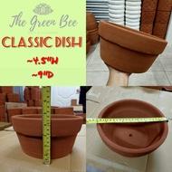 Classic Dish Clay Pot / Terracota Clay Pot / Bonsai Clay Pot
