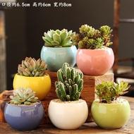 กระถางดอกไม้ไม้อวบน้ำ,พืชบอนไซสีเขียวอวบน้ำในครัวเรือนเรียบง่ายกระถางเซรามิกขนาดเล็กลดล้างสต๊อก