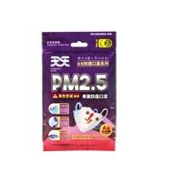天天PM2.5專業防霾口罩 A級(2入)