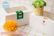 【純白2格裝-22入下標區】開窗 2粒 杯子蛋糕盒 6寸芝士蛋糕盒 包裝盒 馬芬盒 6寸 蛋糕盒 布丁盒 蛋塔盒 餅乾盒