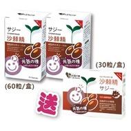 元氣種子-沙棘精(60粒軟膠囊裝)☆2送1特惠組!☆