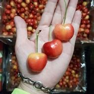智利白櫻桃限時特價2.5公斤原裝
