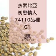 咖啡生豆 - 衣索比亞 初戀情人 74110品種 G1 500g
