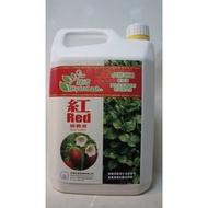 『城市水耕樂園』**綠沛 紅 水耕專用營養液4公升經濟裝**